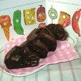 *はらぺこあおむしのチョコレートケーキ*